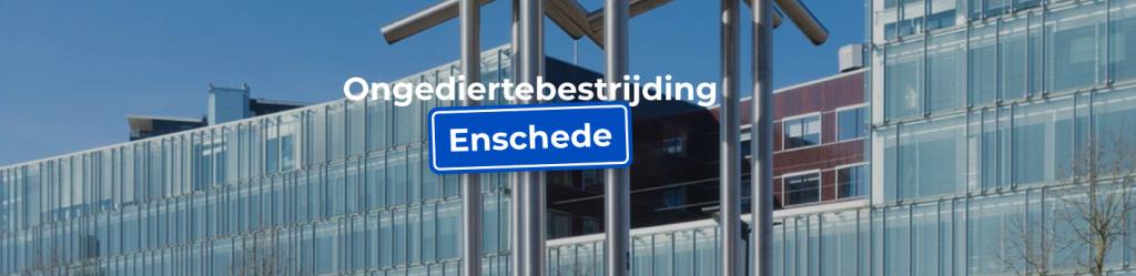 Ongedierte bestrijding in de omgeving van Enschede